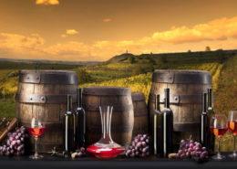 """Фестиваль """"Божоле"""", Свято молодого вина в Закарпатті"""